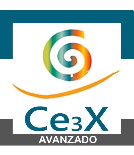 CE3X-AVANZADO
